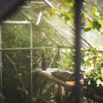 Jak zrobić naturalny nawóz do ogrodu?