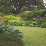 Podział ogrodu
